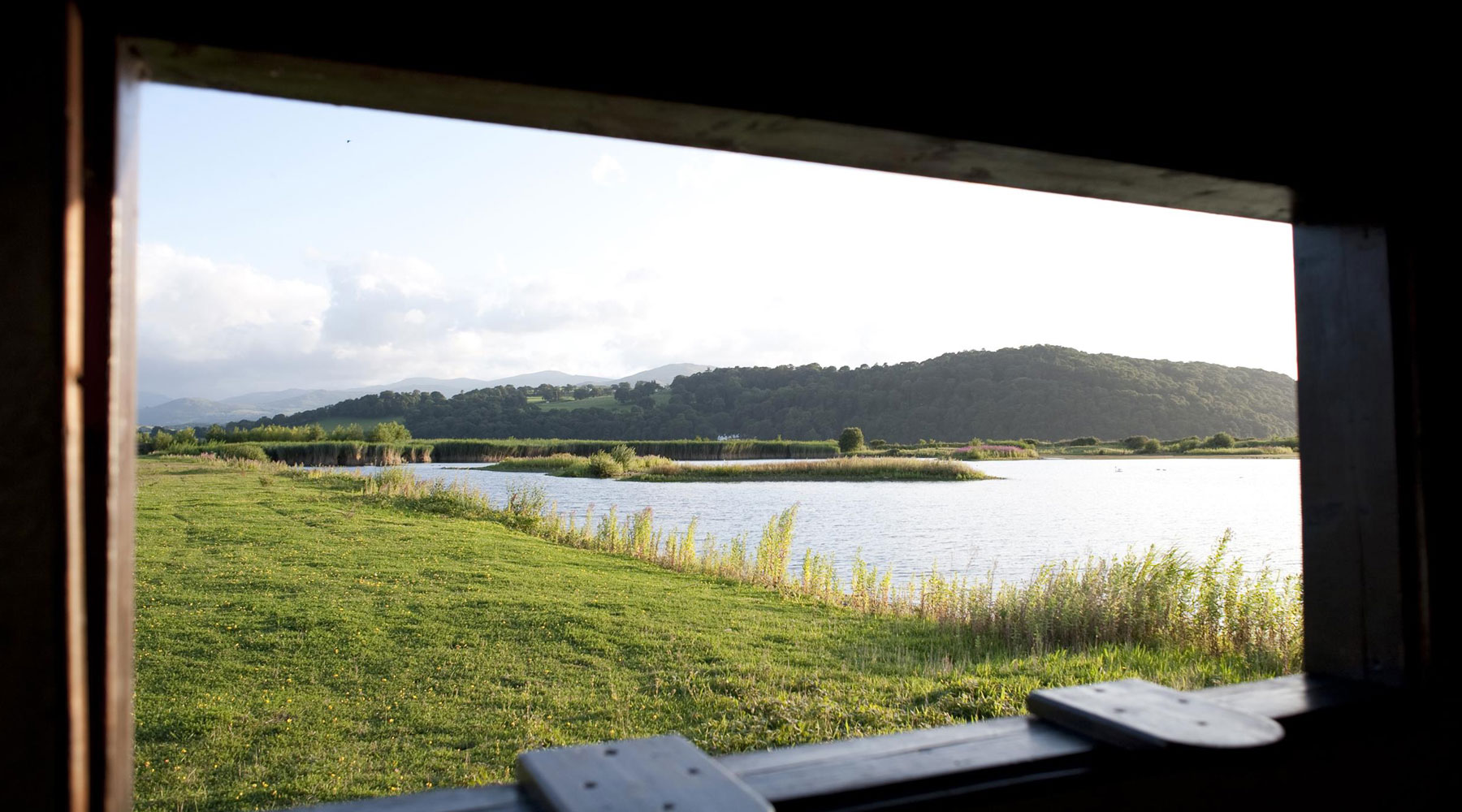 Eleanor Bentall (rspb-images.com) | View From Hide